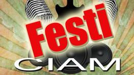 festiciam-2013
